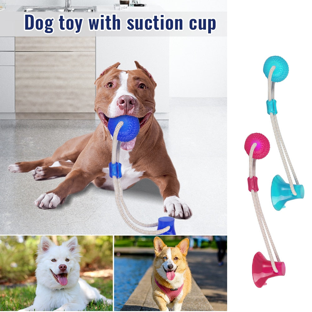 Dog Toys | Dog Tug/Teeth Cleaning Chew Toy with Suction Cup | Rubber Chew Ball with Suction Cup For Small / Medium Dog - GadgetSourceUSA