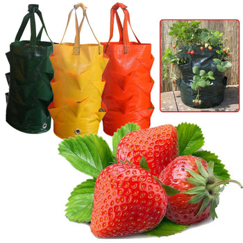 Strawberry Planting Grow Bag | 3 Gallons Multi Mouth Container Bag | Planter Pouch | Garden Supplies - GadgetSourceUSA