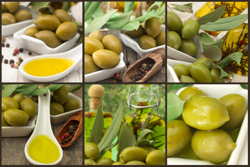 olives and olive oil collage