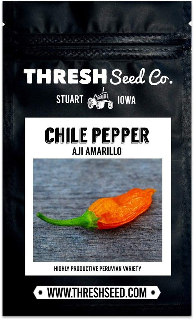 Shop seeds for Aji amarillo chile peppers
