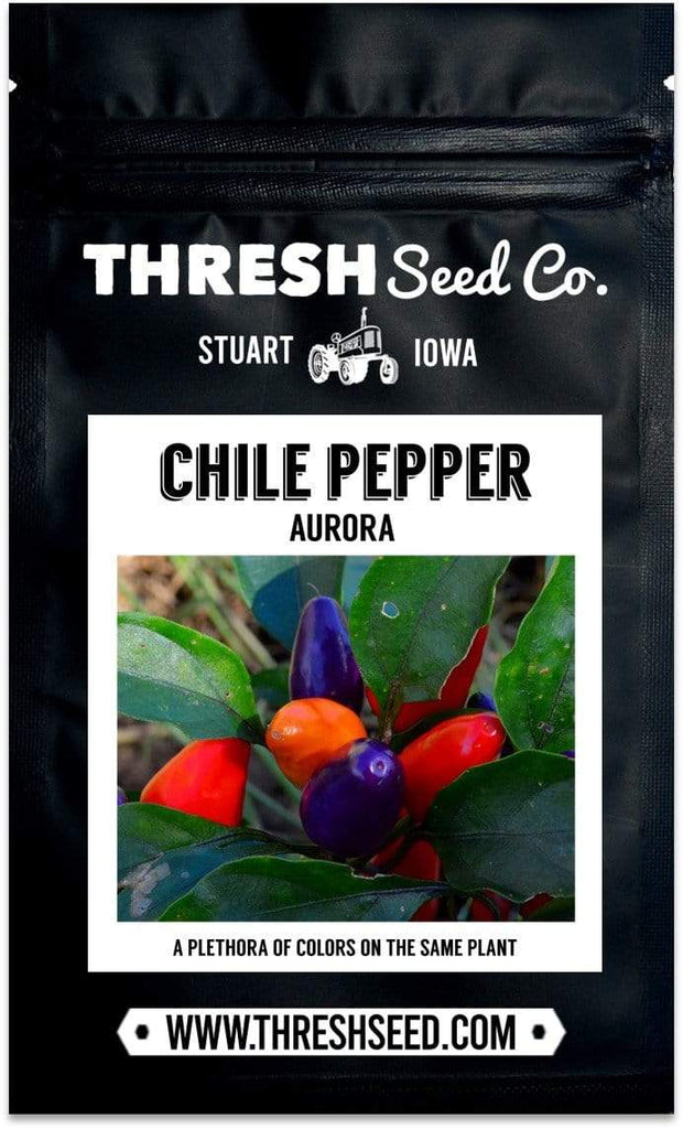 Pack of Aurora Chile Pepper seeds