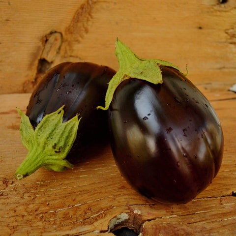 Black Beauty Eggplants