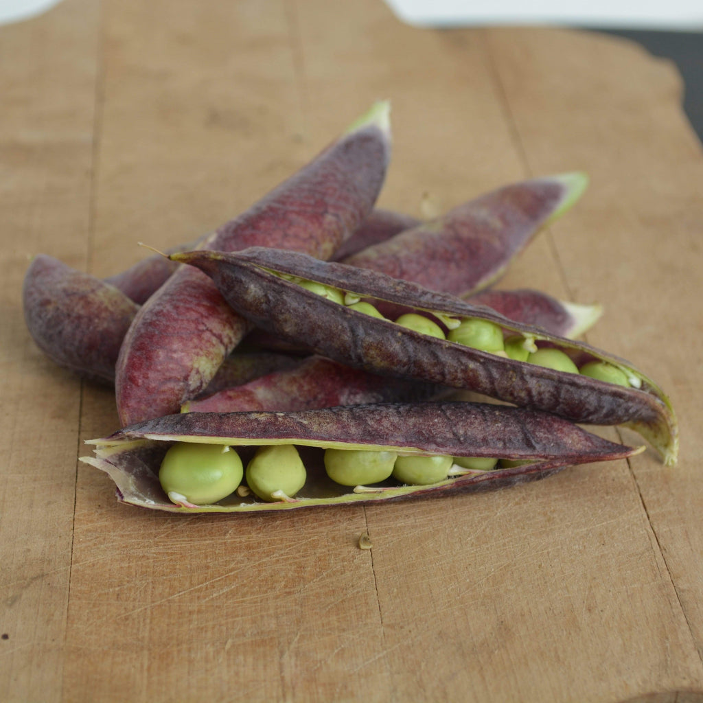 Blue Podded Shelling Peas