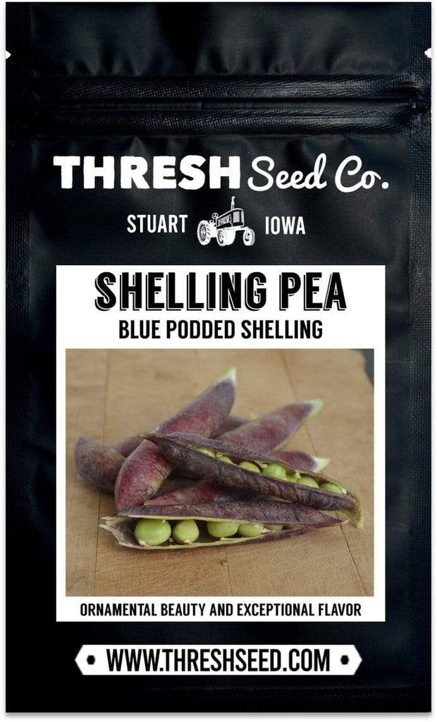 Blue Podded Shelling Pea Seeds