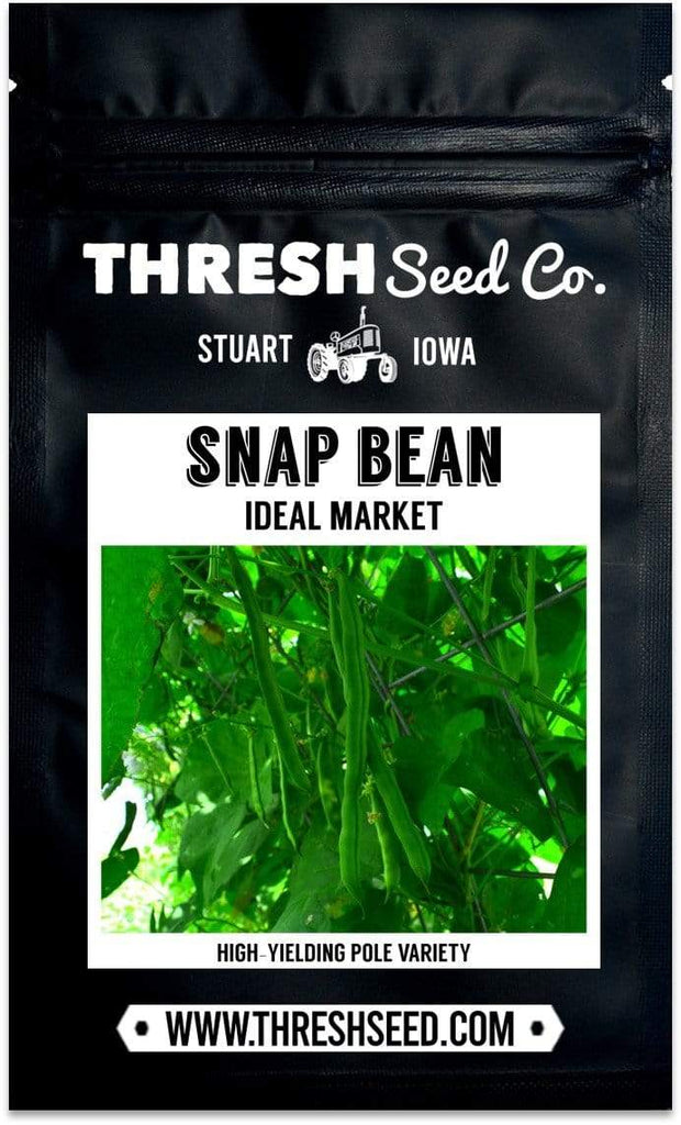 Ideal Market Snap Pole Bean Seeds