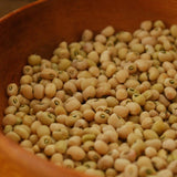 Lady Cowpea Seeds