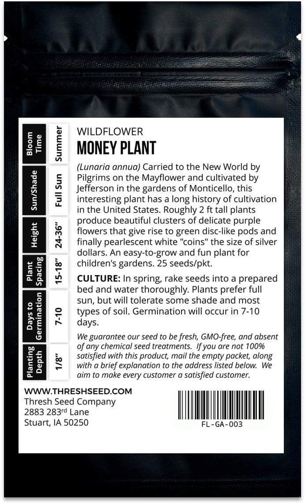 Money (Silver Dollar) Plant Seeds
