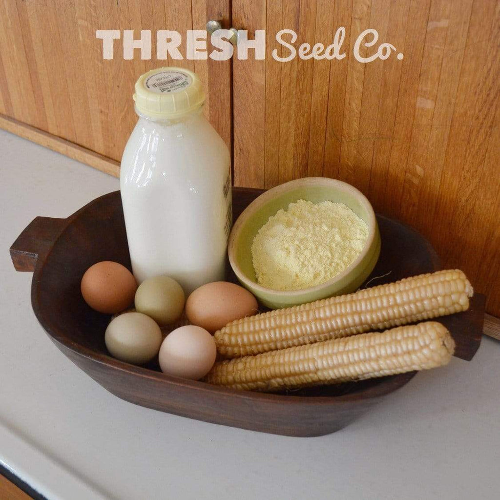 Rhode Island White Cap Flint Corn in basket with milk, eggs, and flour