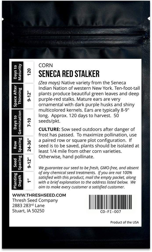 Seneca Red Stalker Corn Seeds