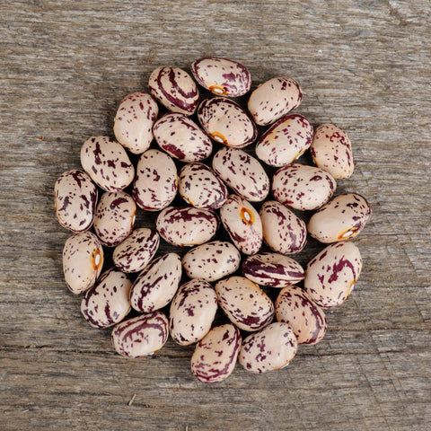 Speckled Cranberry Shelling Bean pile