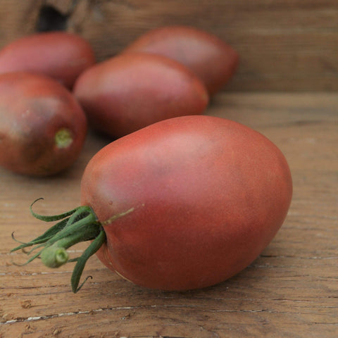 Ukrainian Purple Tomato Seeds