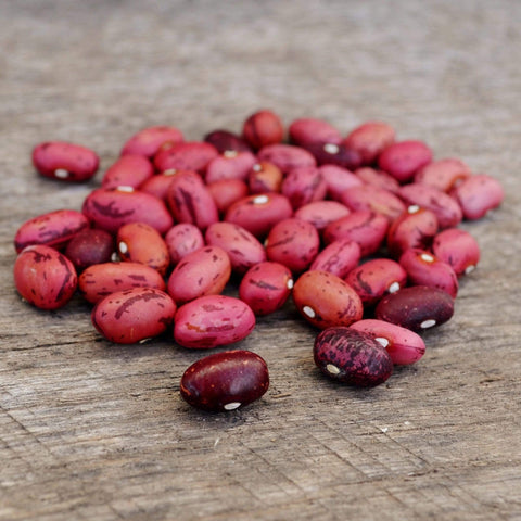 Vermont Cranberry Shelling Beans