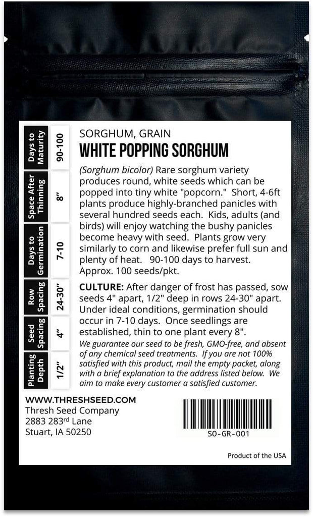 White Popping Sorghum Seeds