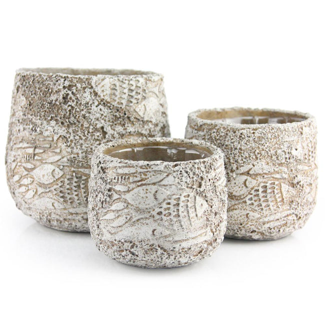 Fossil Ceramic Pot Set