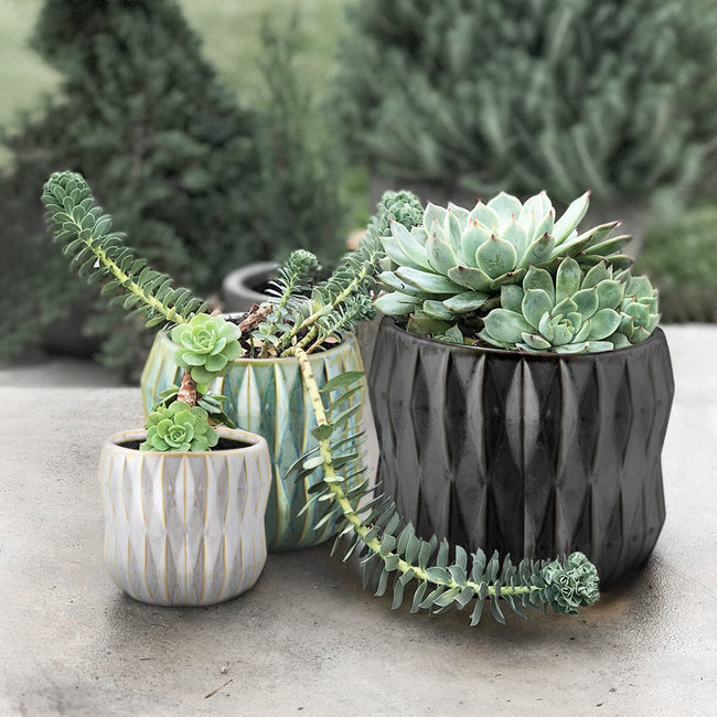 Ceramic Pot Sets