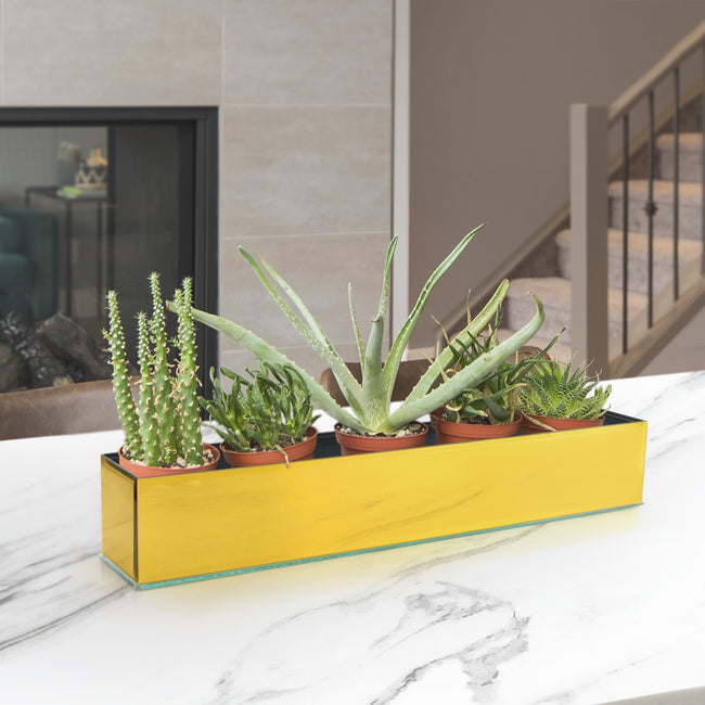Mirror Glass Rectangle Planter