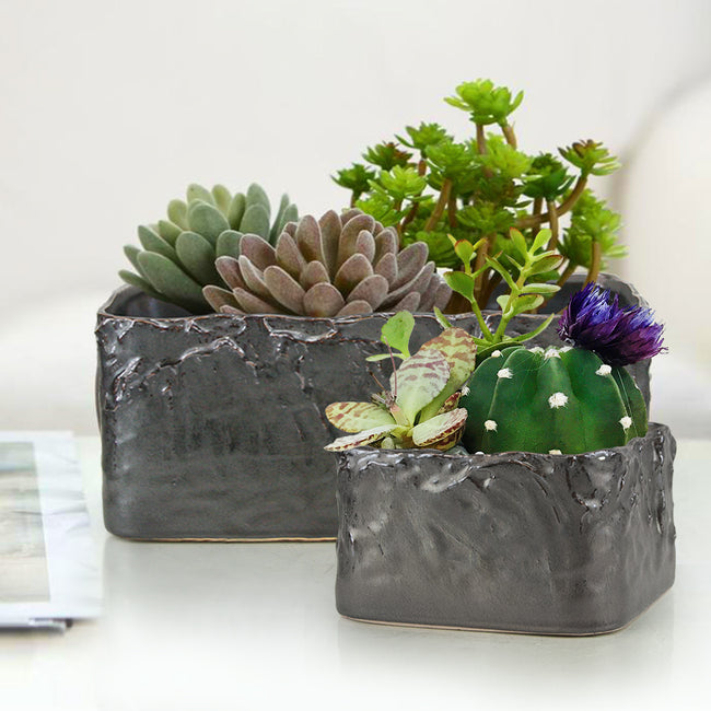 Singed Ceramic Pot & Planter Set