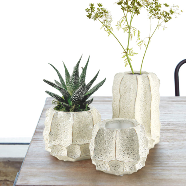 White Bone Ceramic Planter/Vase