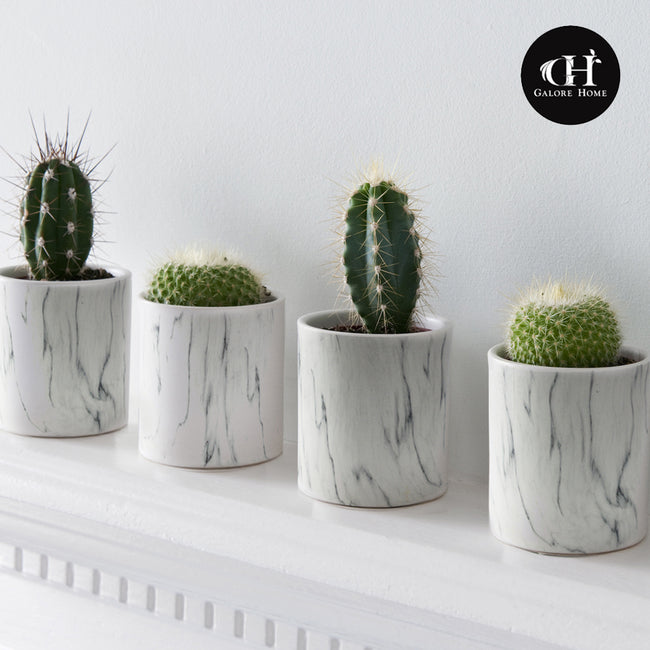 Indoor Ceramic Marble Pot Sets