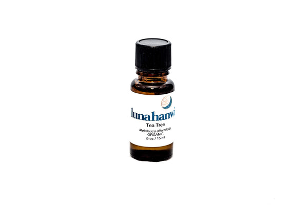 Tea Tree Organic Essential Oil - Luna Hanwi