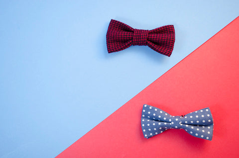 2 bow ties with a color blocking background