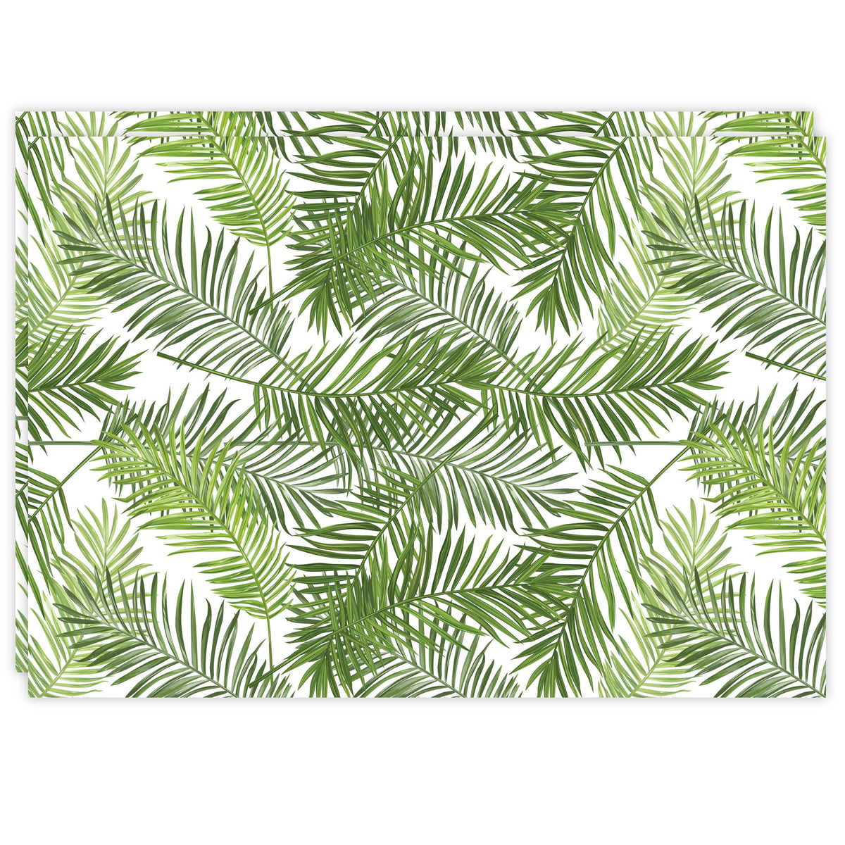 Rectangle Dailies® | Tropical Palms (2-Pack) - TingeDaily