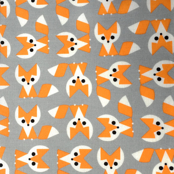 Foxes in Orange