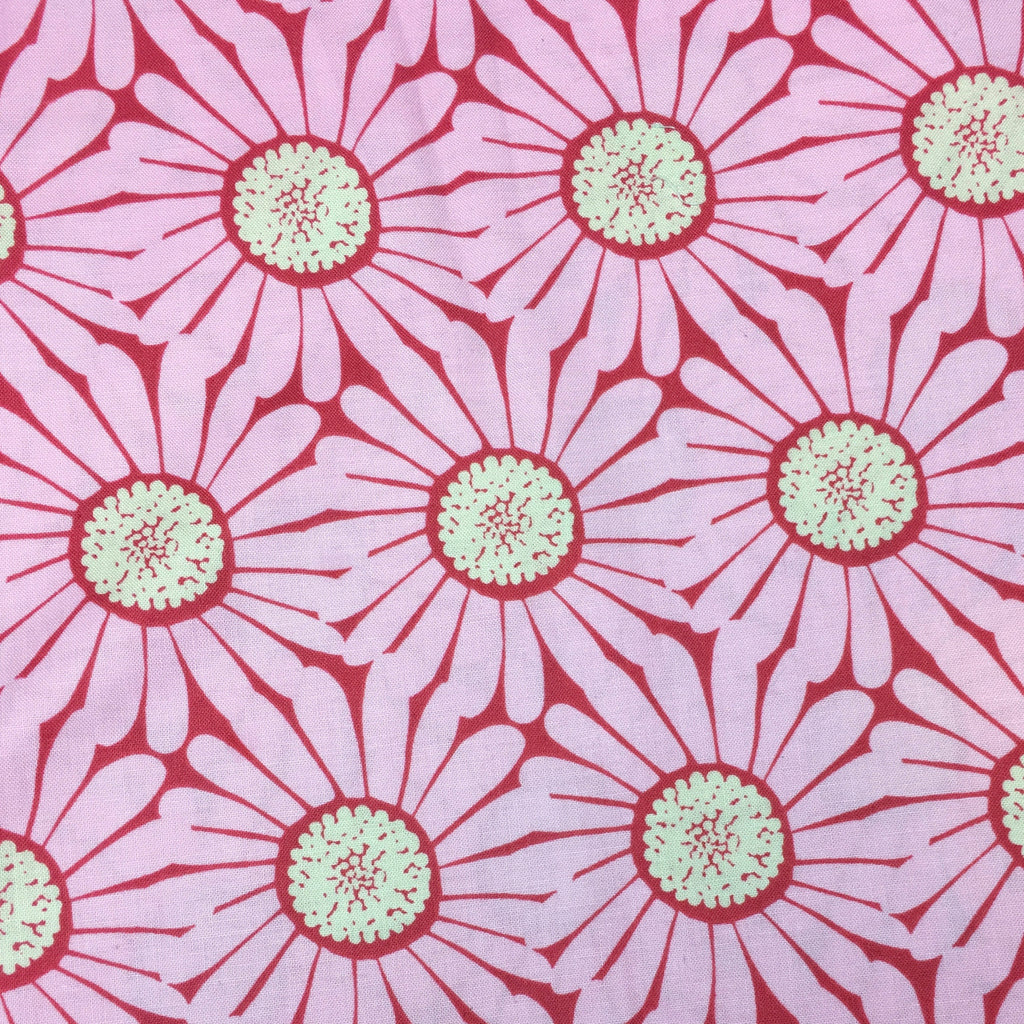 Pink Splash Daisy