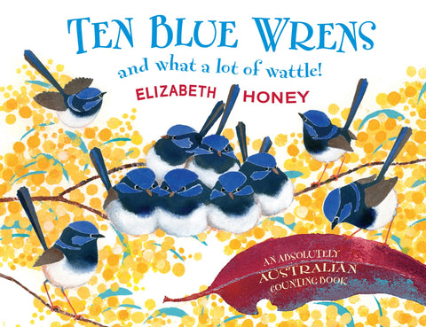 Ten Blue Wrens and What A Lot of Wattle