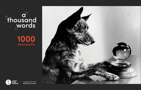 PRE ORDER A Thousand Words 1000 Piece Jigsaw Puzzle