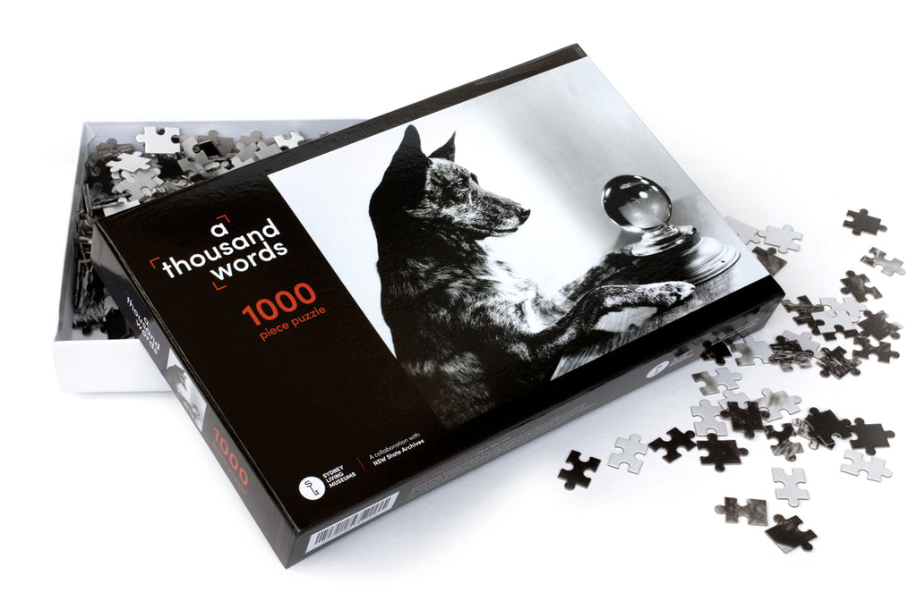 A Thousand Words 1000 Piece Jigsaw Puzzle