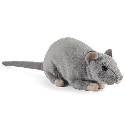 Rat with Squeak