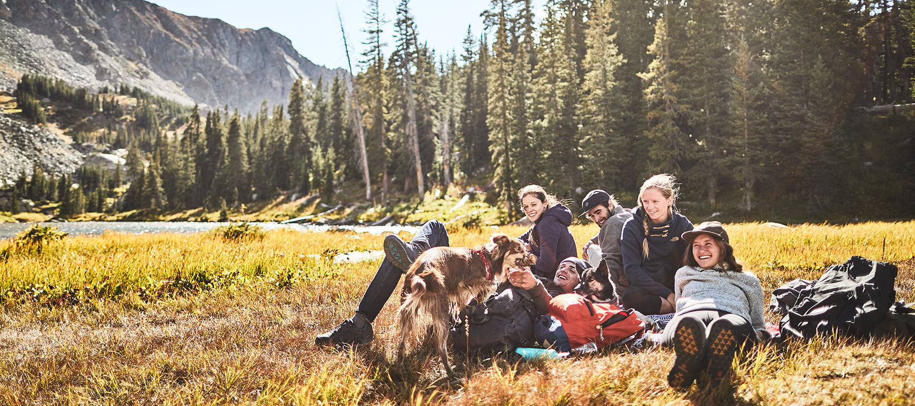 Group of hikers in the forest resting in the sun with a dog