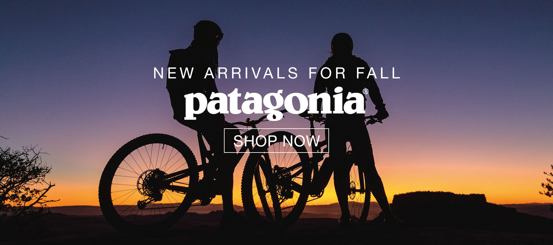 Patagonia New Fall Arrivals