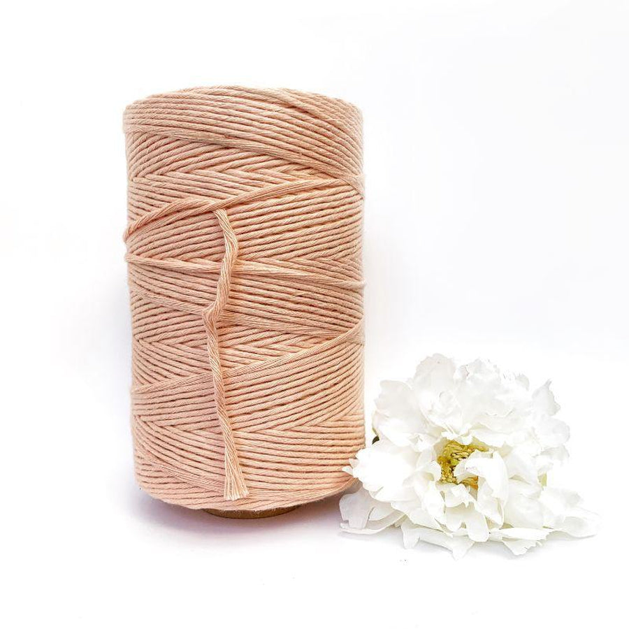 Macrame Twisted Mop Cotton - Coloured 3mm x 1kg (Approx 480 Meters)-Macrame-Little Lane Workshops