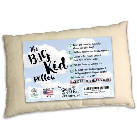 Big Kid Pillow (warehouse sale)