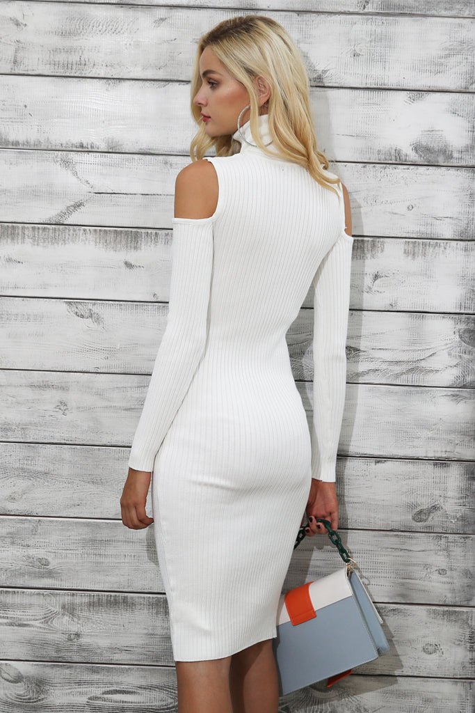 Turtleneck Knitted Bodycon Dress