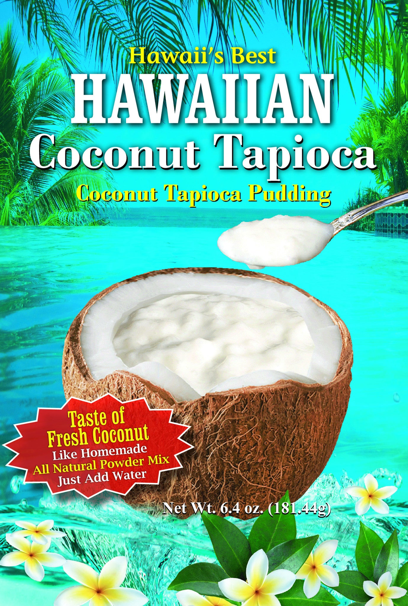 (1 BAG) COCONUT TAPIOCA MIX, Gluten Free, Kraft Minute Tapioca already inside, Just add water!