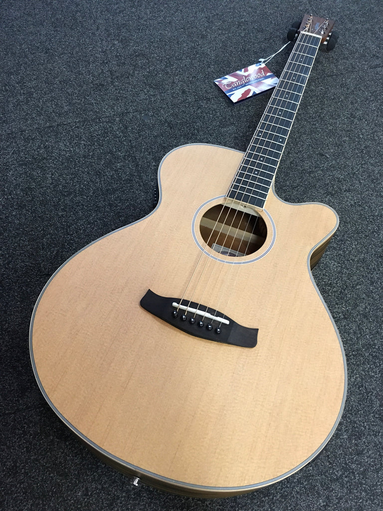 Tanglewood Discovery Electro Acoustic - Pacific Walnut