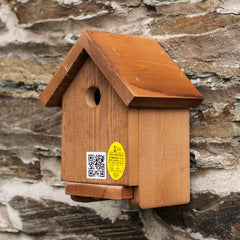 Apex box for garden birds
