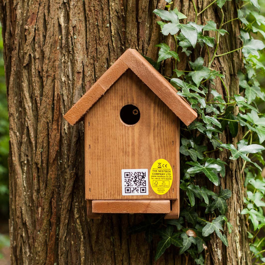 Apex bird nesting box