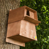 Barn Owl Nesting Box on tree
