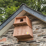 Barn Owl Nest Box on gable end of barn