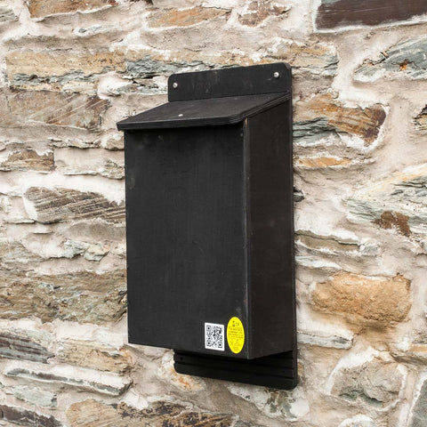 Large Colony Bat Box