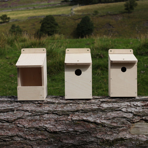 House Sparrow Nest Box