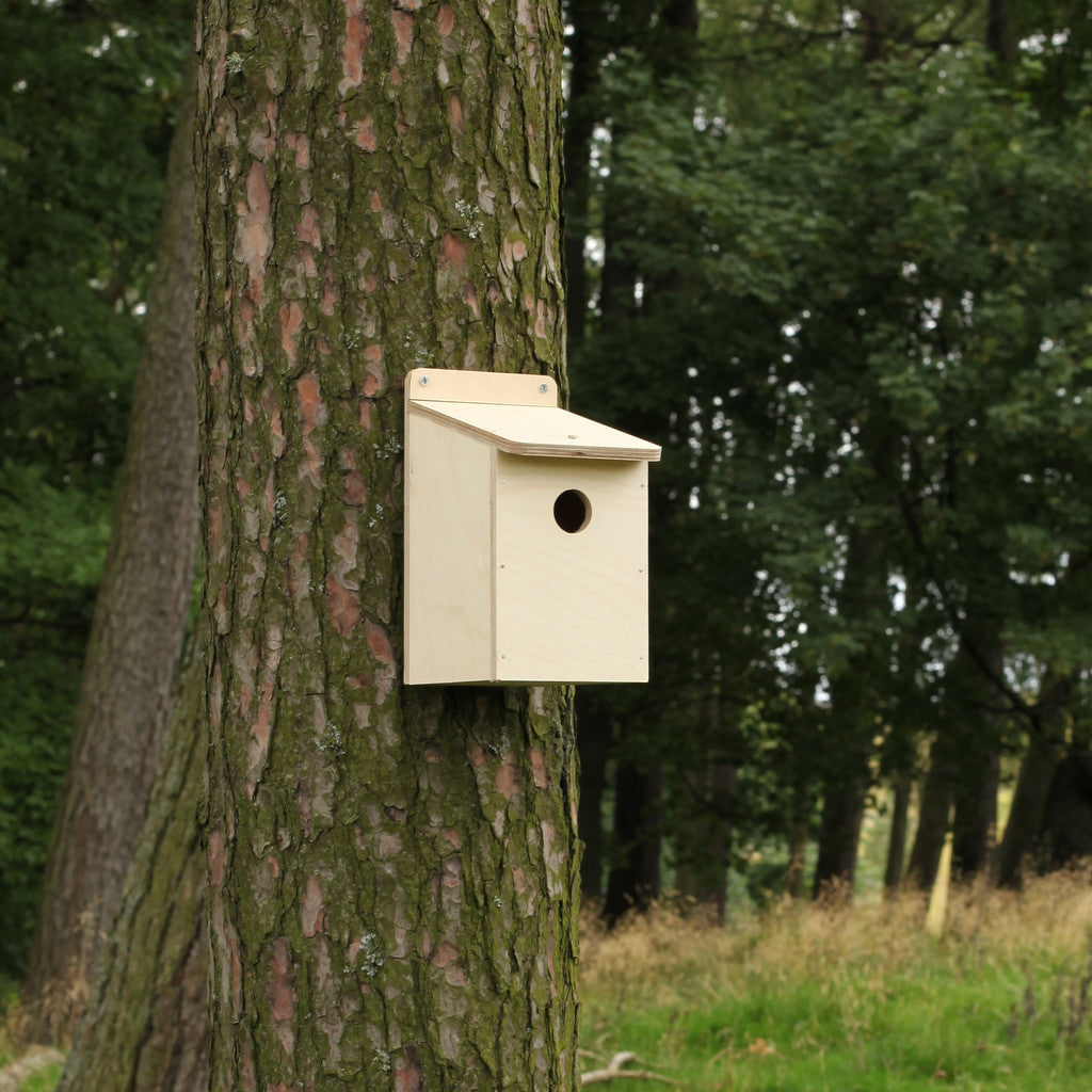 hole nesting box from flatpack
