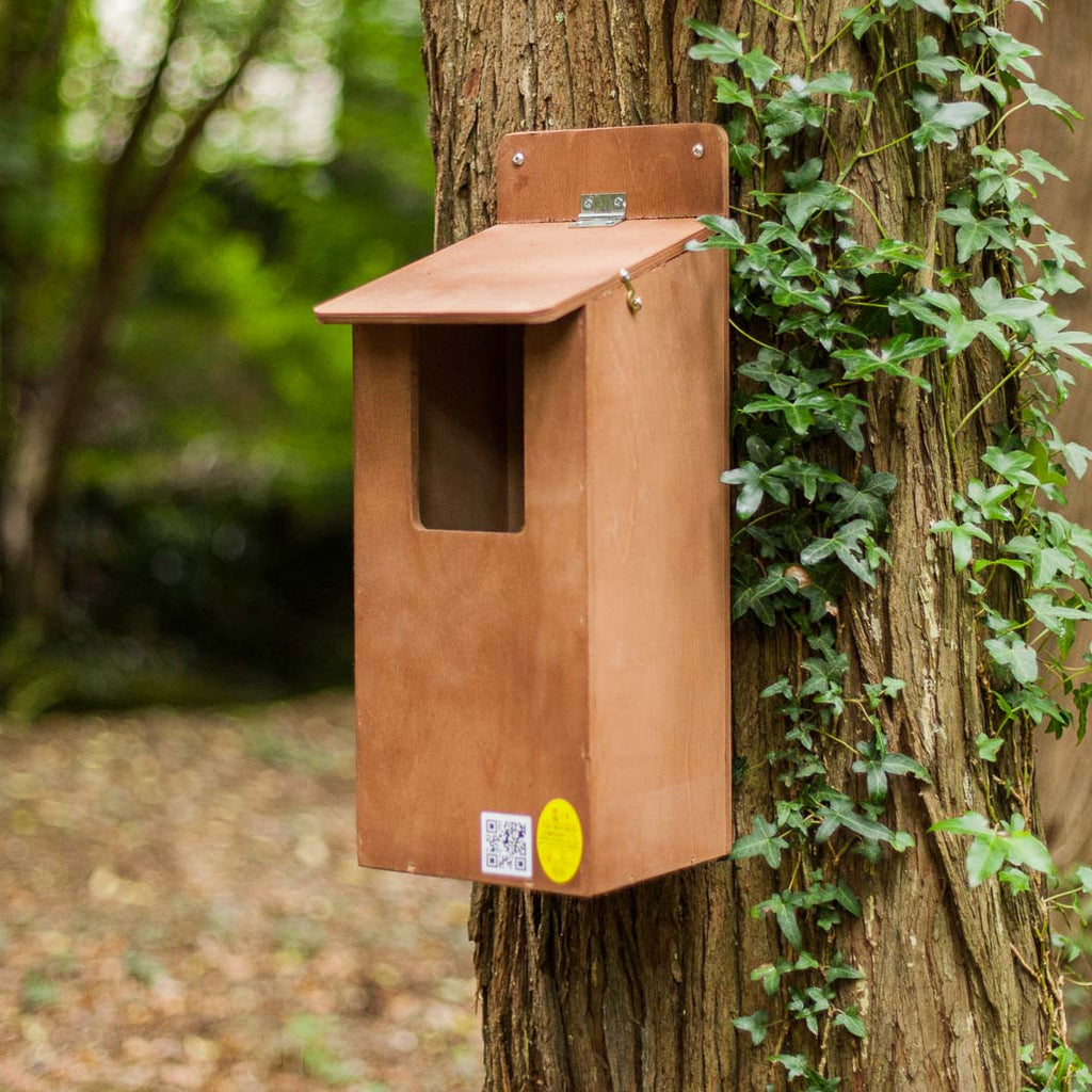 Large bird box mounted on tree
