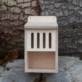 Bug Box Kit