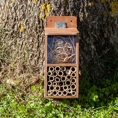 bug house for bees, bugs, lacewings