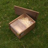bumblebee box showing internal nest area